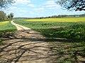 Hyde Farm, west of Damerham - geograph.org.uk - 162483.jpg