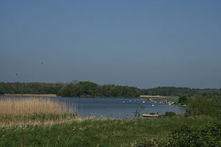 Lough Ennell lake in Ireland