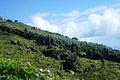 Ilha do Corvo Açores, paisagens, 4, Arquivo de Villa Maria, ilha Terceira, Açores.JPG