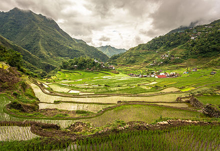 The Batad rice terraces, The Rice Terraces of the Philippine Cordilleras, the first site to be included in the UNESCO World Heritage List cultural landscape category in 1995. Inside the Batad rice terraces.jpg