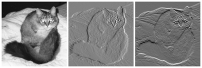 Left: Black and white picture of a cat. Center: The same cat, displayed in a gradient image in the x direction. Appears similar to an embossed image. Right: The same cat, displayed in a gradient image in the y direction. Appears similar to an embossed image.