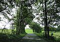 Iserlohn, Germany - panoramio (39).jpg