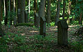 Jüdischer Friedhof Cramberg 7.jpg