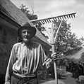 Janez Intihar, 85-leten, z grabljami, ki jih sam izdeluje. Pri Mohorju, Javorje 1960.jpg
