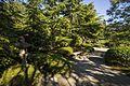 Japanese Garden (21037006923).jpg