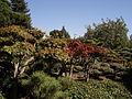 Japanese Gardens-2.jpg