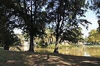 Jardim do Campo Grande 9214.jpg
