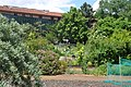 Jardin des Plantes, Toulouse, Midi-Pyrénées, France - panoramio (3).jpg