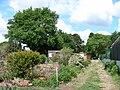 Jardins familiaux1.JPG