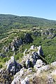 Jelasnica gorge 26.jpg