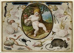 Hoefnagel, Joris (1542-1601)