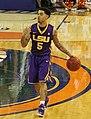Josh Gray (basketball).jpg