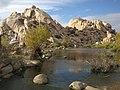 Joshua-National-Park-California0997.JPG