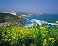 KOCIS Jeju Island (5983282510).jpg