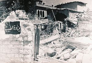 Battle of Karameh - The ruins of Karameh following the battle