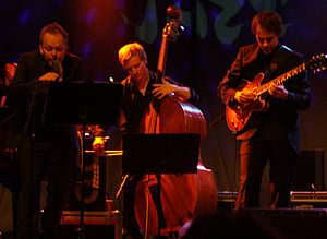 Karl Seglem - Karl Seglem, Sigurd Hole and Gisle Torvik  at Vossajazz 2014.