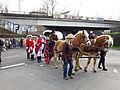 Karnevalszug-beuel-2014-48.jpg