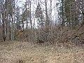 Kastrānes pilskalns, Suntažu pagasts, Ogres novads, Latvia - panoramio - M.Strīķis (7).jpg