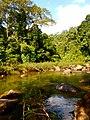 Khao Sok, 2014 December - panoramio (39).jpg