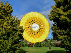 The Kiwi360 kiwifruit in Te Puke