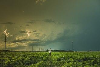 Niverville, Manitoba - Image: Kleefeld field landscape (Unsplash)