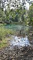 Kolorowe Jeziorka w Rudawach Janowickich - jeziorko niebieskie.jpg