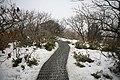 Korea-Snow in Mt. Deogyu-Stairway-01.jpg