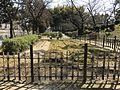 Kosaiso Field in Shukkei Garden.jpg