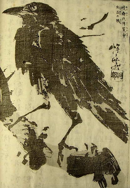 Image Result For Raven Bird Coloring