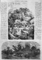 L'Illustration - 1858 - 045.png