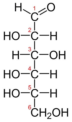 Znalezione obrazy dla zapytania L-glucose fischer