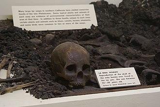 "La Brea Woman - Replica of the skull of ""La Brea Woman"" on display, Santa Barbara Museum of Natural History"