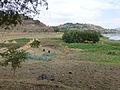 Lac Haïk-Ethiopie-Cultures (3).jpg