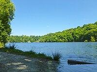 Lac de Pléven.jpg