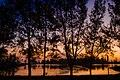 Lagoa em Quissamã.jpg