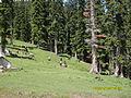 Lalazar (Kaghan valley).JPG