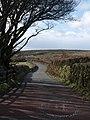 Lane to Ausewell Cross - geograph.org.uk - 1229167.jpg