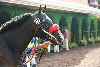 Pacific Classic Stakes - 2006 winner Lava Man