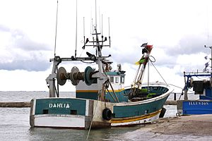 Le chalutier-fileyeur Dahlia (9).JPG