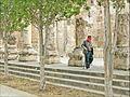 Le portique romain (Amman, Jordanie) (7094481091).jpg