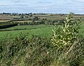 Leicestershire countryside - geograph.org.uk - 564691.jpg