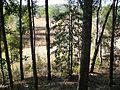 Letchworth Mounds12.jpg