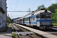 Letovice2014panťák560.jpg