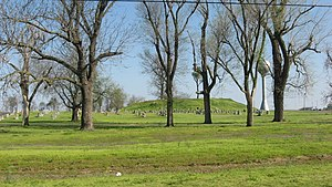 National Register of Historic Places listings in New Madrid County, Missouri - Image: Lilbourn Fortified Village primary mound