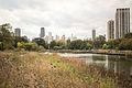 Lincoln Park, Chicago October 2013-5068.jpg