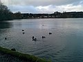 Linlithgow EH49, UK - panoramio (10).jpg