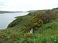 Loch Bad a Ghaill - geograph.org.uk - 502710.jpg