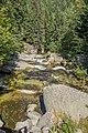 Lolaia River-9072.jpg