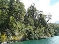 Los Alerces Nacional Park - Chubut - Argentina - panoramio.jpg