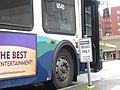 Losing Buses Need Not Stop (5617286219).jpg